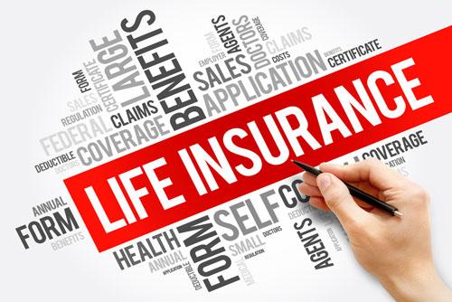Life Insurance Agency